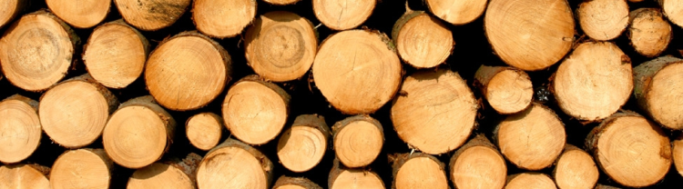 Holz von Acadian Timber